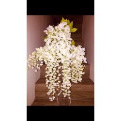 Branche de glycine blanche